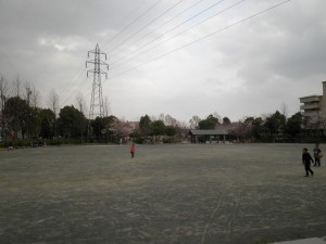 P3230051